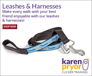 Whether you're embarking on a quick stroll around the block or a long jog on a secluded beach, KPCT's wide selection of non-aversive leads and harnesses will make every walk enjoyable for both you and your best friend.