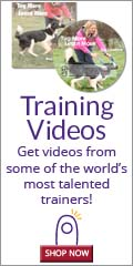 Improve your skills with KPCT's interactive training videos from some of the world�s most talented trainers.
