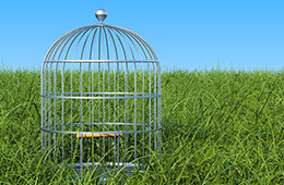 Save up to 65% off on Pawhut Bird Cage.