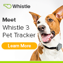 Never lose your pet with the Whistle GPS Pet Tracker