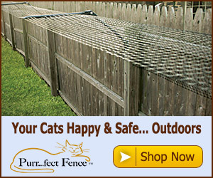 Purrfect Fence Keeps Cats Happy & Safe Outdoors Banner