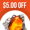 $5 off your 1st order at Ana Silver Co.