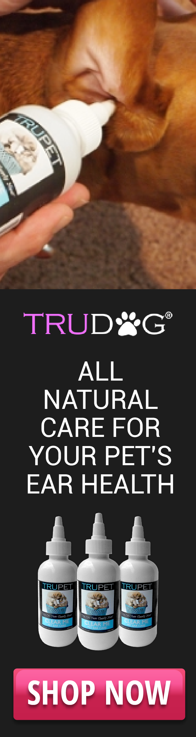 allnatural care for your pets health