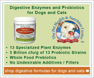 Digestive Enzymes and Probiotics for Dogs and Cats