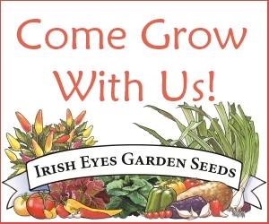 Irish Eyes Garden Seeds