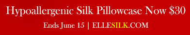 Select Silk Pillowcase Now $30