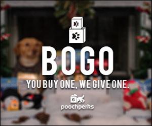 #PawItForward with the BOGO Box!