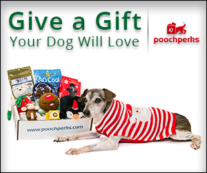 Give a Gift Your dog will Love!