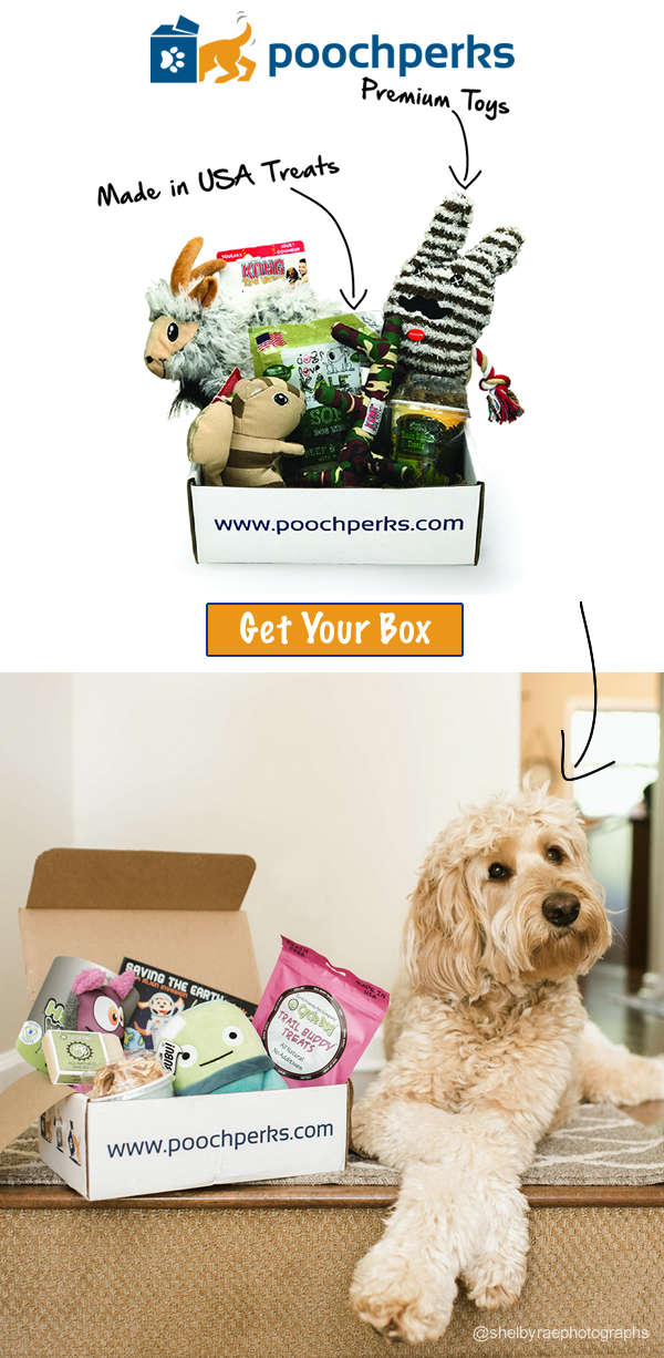 Pooch Perks Premium Subscription Boxes