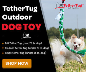 Tennis Ball 3 Pack Tether Tug Outdoor Dog Toy