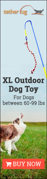 XL Outdoor Dog Toy