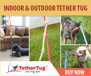 Indoor & Outdoor Tether Tug