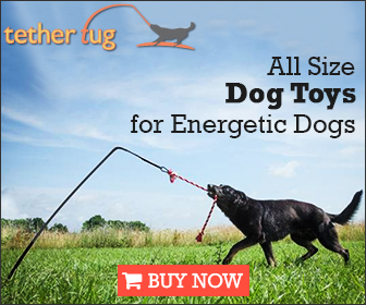 Tether Tug for Dogs!
