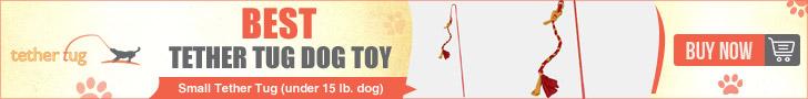 Best Tethertug Dog Toy