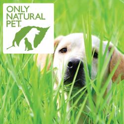 Natural dog chews and natural dog treats