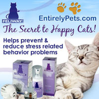 Feliway Diffusers and Sprays available at Entirelypets.com