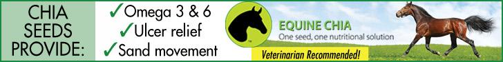 Equine Chia = Healthy Horses!
