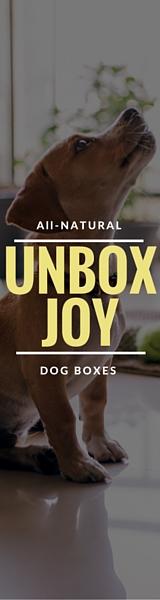 Organic All Natural Dog Boxes