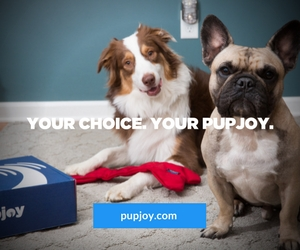 your choice. your pupjoy.