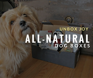 All Natural Dog Boxes