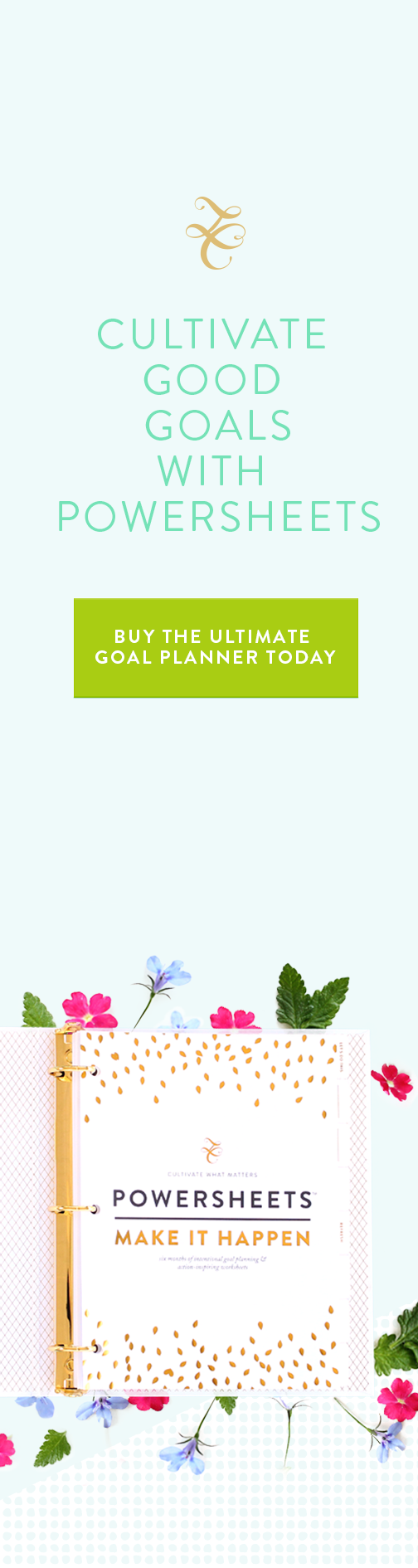 PowerSheets Ultimate Intentional Goal Planning Workbook Lara Casey Shop
