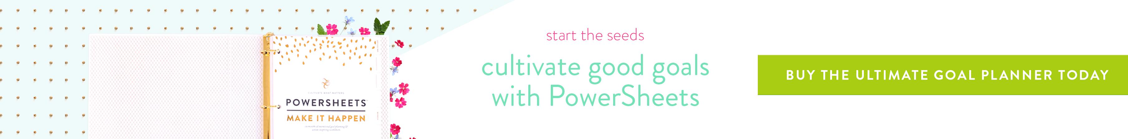 PowerSheets + Day Designer | A 6-Month Update » My Favorite Adventure