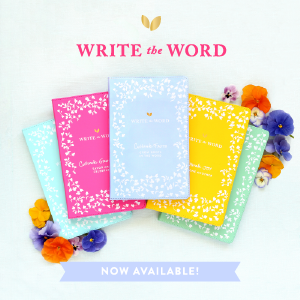 Write the Word Bible Journals