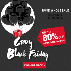 Crazy Black Friday Sale for Your Choosing. You can select the item which you are interested with general big discount!