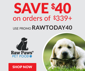 Save 40% of $339 - use code RAWTODAY40