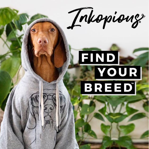 Animal Inspired Clothing