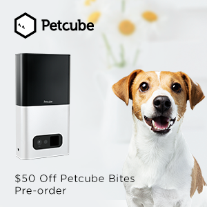 Petcube Bites Pre-Order: $50 Off