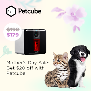 Mother's Day Sale: $20 Off Petcube Play