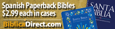 Spanish NVI Bibles Wholsesale by the case or in singles