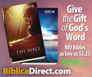 NIV Paperback Bibles