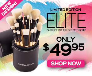 NEW 24-Piece Elite Brush Set With Cup