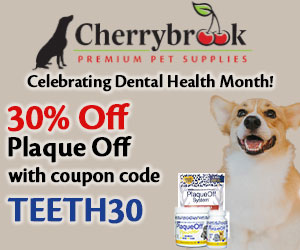30% off Plaque Off for Dental Health Month!