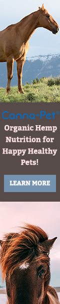 Horse HEMP CBD Nutrition