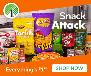 Your Favorite Snacks For Just $1 At Dollar Tree