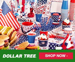 Dollar Tree Patriotic300x250