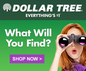 Dollar Tree - Everything is $1