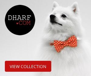 Designer Pet accessories