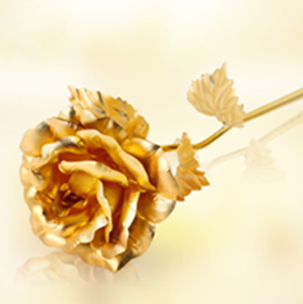 Lover's Golden rose