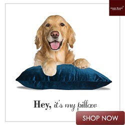 Amore Beaute Throw Pillows