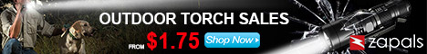 Outdoor Torch Sale From $1.75