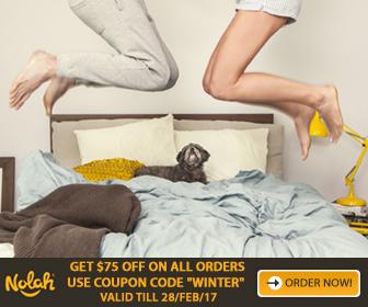 Nolah Mattress Foam Bed