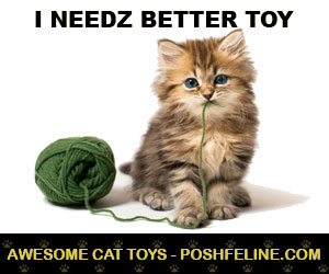 awesome cat toys at poshfeline.com