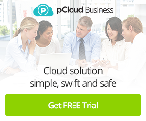 pCloud Business Lead