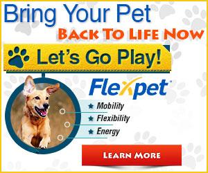 Bring your pet back to life Flex Pet Banner
