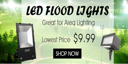 Shop LED Flood Light from $9.99 at lightingever.com