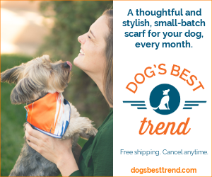 Thoughtful and stylish small-batch scarves for dogs